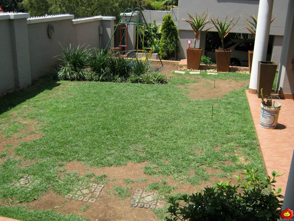 Gardening ideas in south africa garden ftempo for Garden ideas south africa